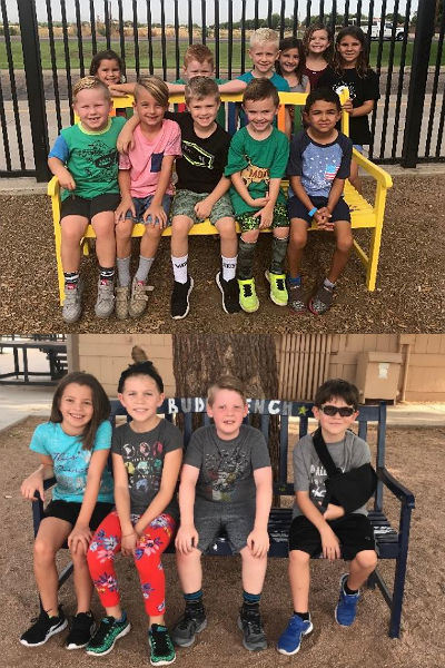Weinberg Buddy Benches