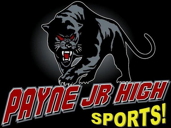 panther logo sports