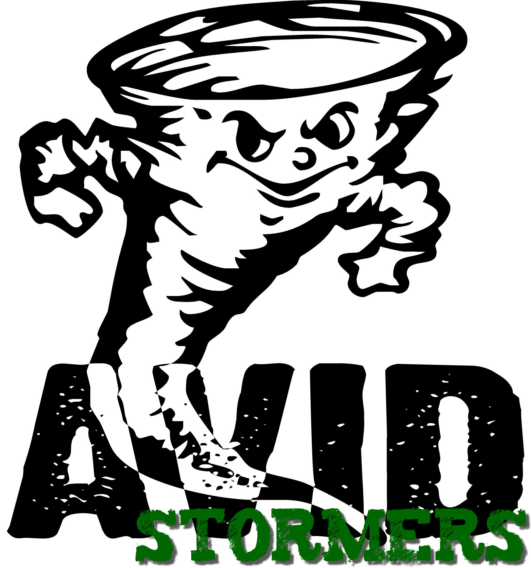 AVID Stormers