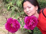 Ms. Jiun Shaffer