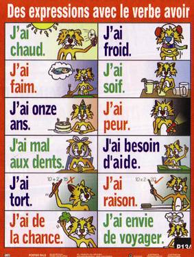 Expressions with Avoir