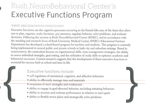 Executive Function One Page