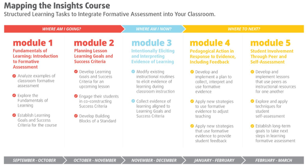 Formative Assessment Insights Course Information