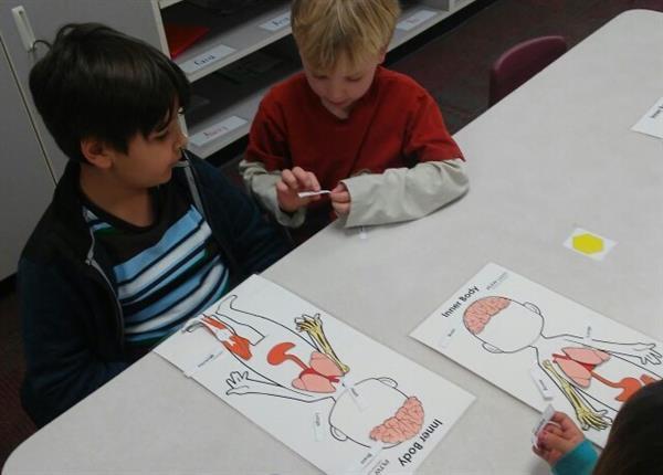 01 - Kindergarten - Julie Letofsky / PLTW: Structure and Function