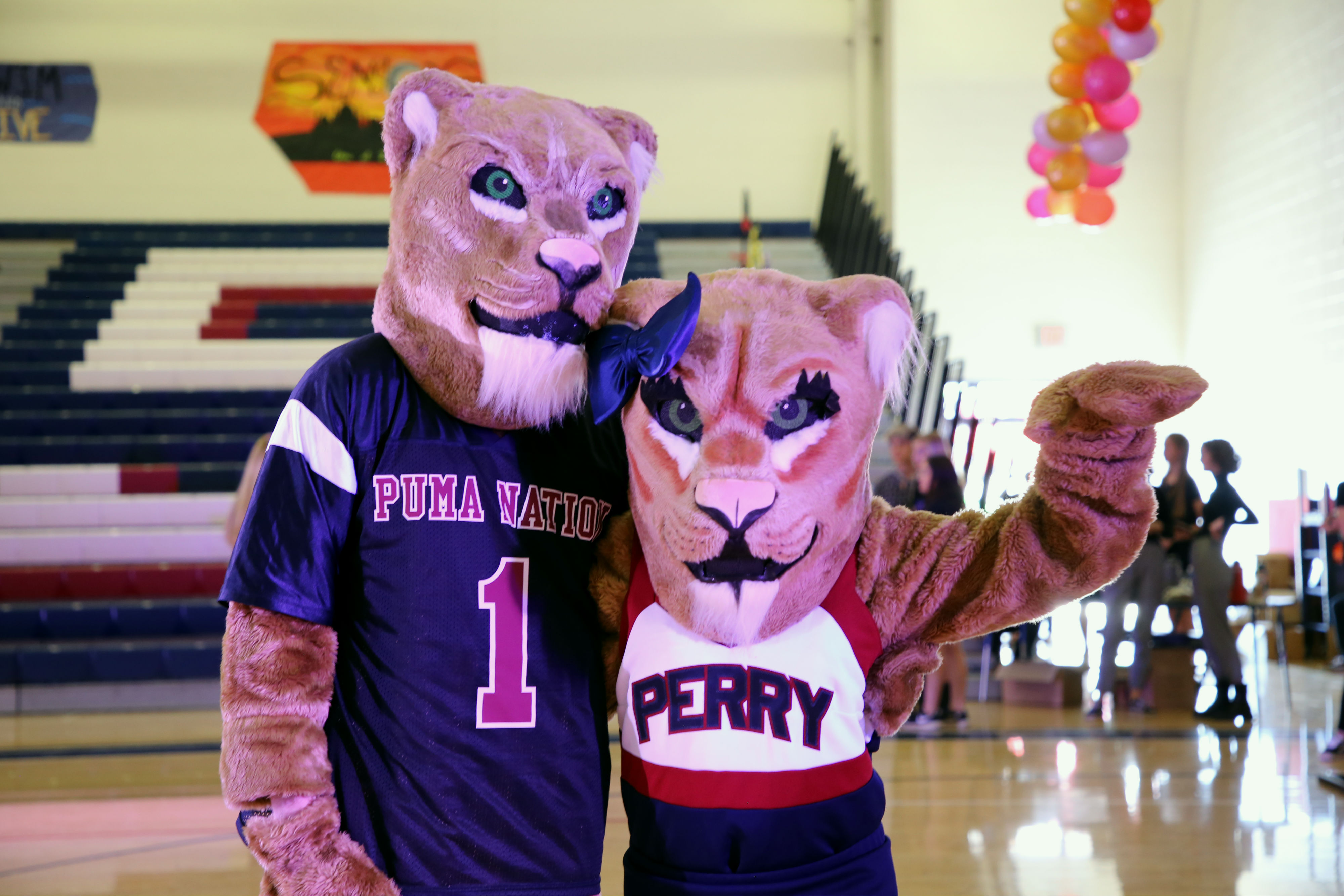 Perry High / Overview