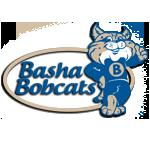 About Basha Elementary