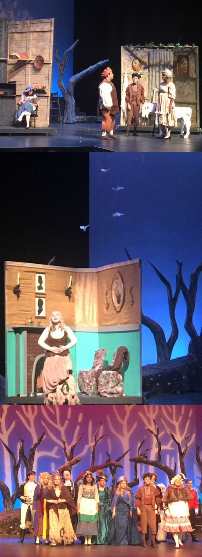CHS Theatre department's Into the Woods