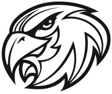 Falcon Mascot Curriculum freedom falconsFalcon Head Logo