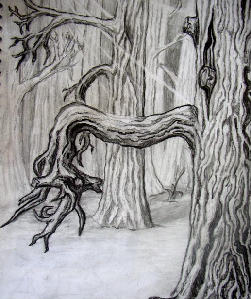 Woodland by Josh Missler